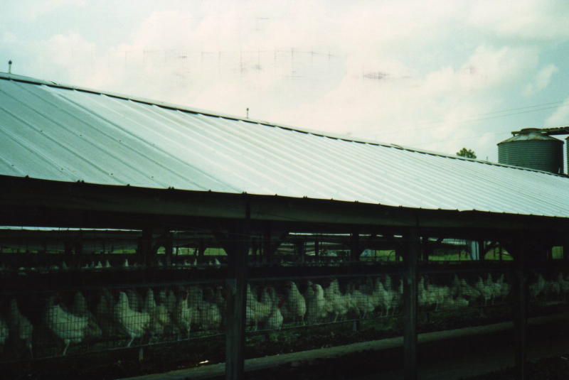 LO/MIT Agricultural Radiant Barrier 3